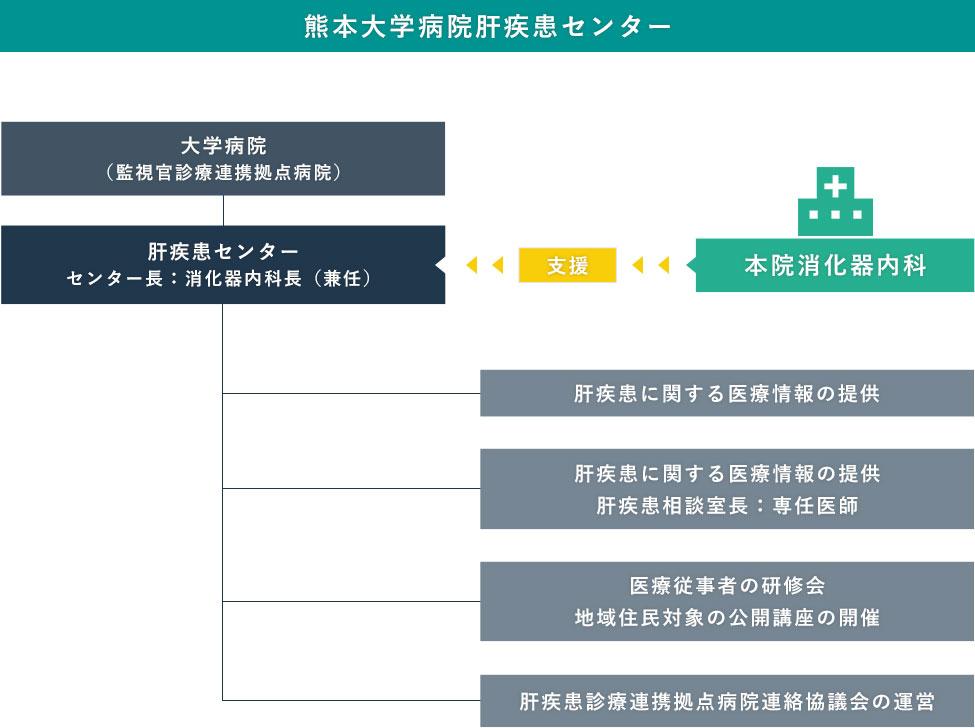 熊本大学病院 肝疾患センター業務図